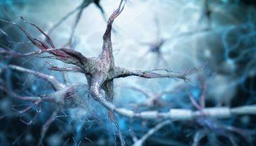 ABD'de yapılan araştırma Parkinson ile apandisit arasında ilişki buldu