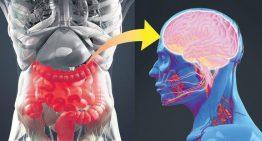 Vücuda bakteri verip tedavi ediyor