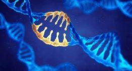 Hem virüse hem kişilerin DNA'sına müdahale ederek hastalıkları önlemek mümkün!
