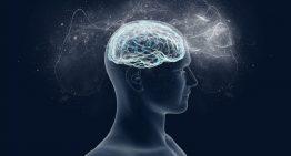 Beyni 11 yaş gençleştirmenin yolları nelerdir?