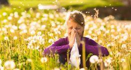 Polen alerjisi mevsimi başladı! Polen alerjisine karşı ne yapılmalı?