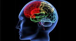 Apandisiti alınan kişilerde Parkinson riski!